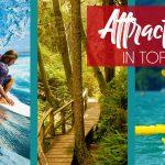 attractions in tofino