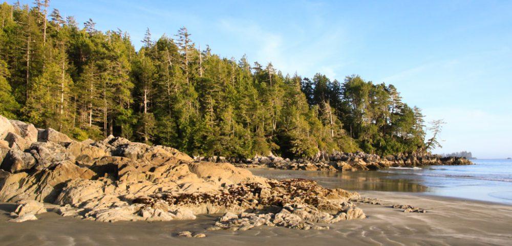 Tonquin Beach1