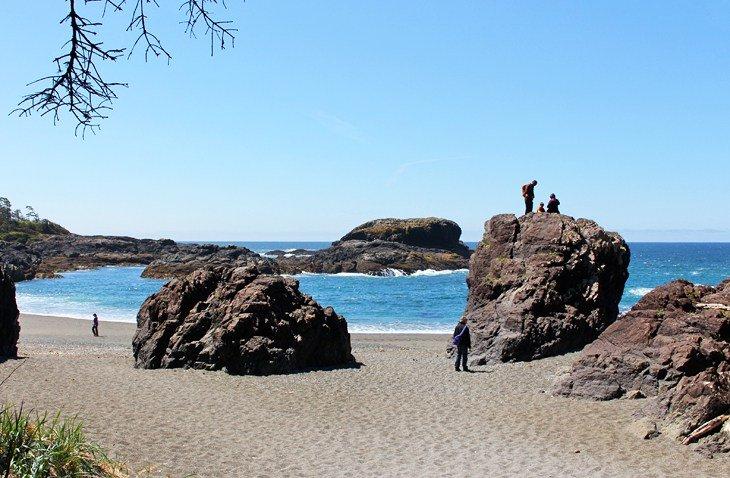 Wild Pacific Hiking Trail (South beach trail Tofino)